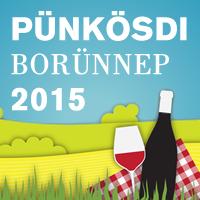 punkosd_2015